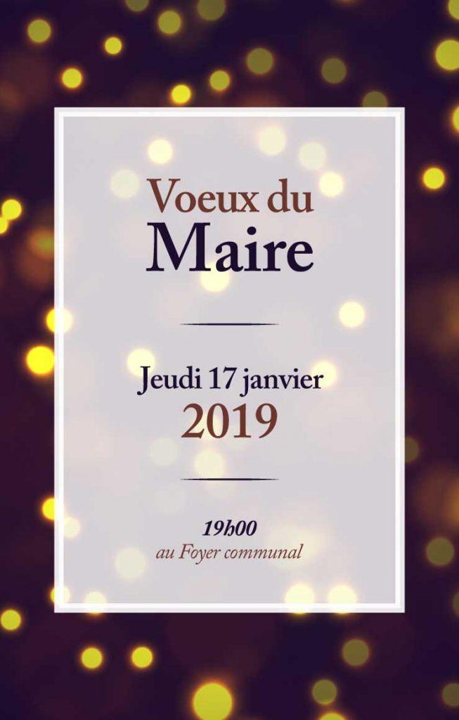 voeux_maire_la_calmette_2019